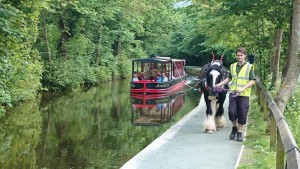 Horse Drawn Canal Cruise